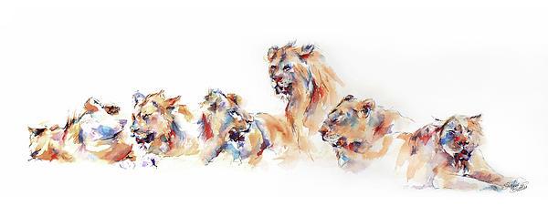 Pride Of Samburu Print by Stephie Butler