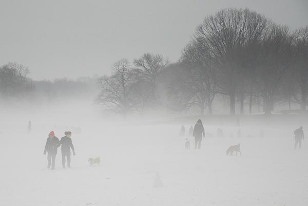 Prospect Park Brooklyn In Winter Print by Julie VanDore