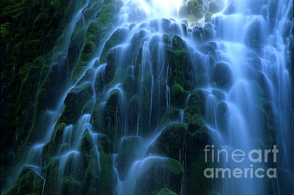 Bob Christopher - Proxy Falls Detail 2