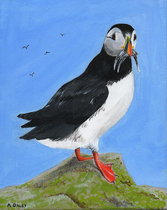 Anne Oxley - Puffin