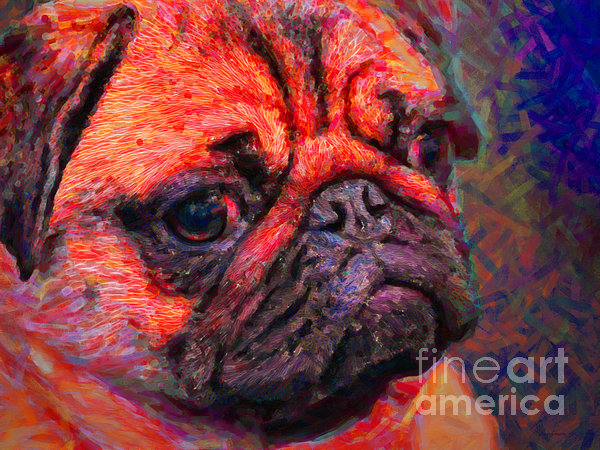 Pug 20130126v2 Print by Wingsdomain Art and Photography