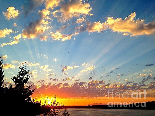 Sean Griffin - Puget Sound Sunset