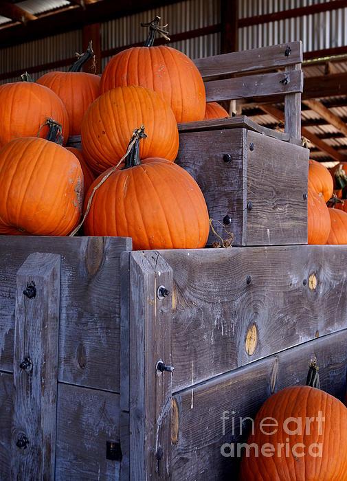 Pumpkins On The Wagon Print by Kerri Mortenson