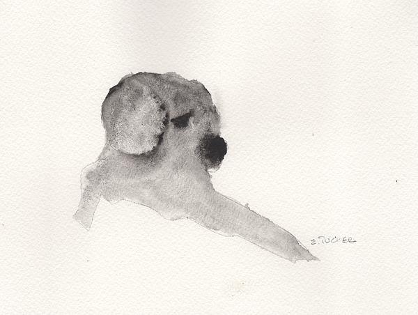 Puppy Love 2 Print by Elizabeth B Tucker