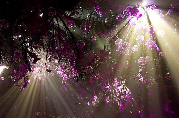 Purple Magic Print by Nadya Ost