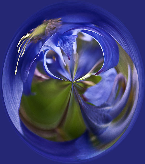 Purple Orb Print by Ron Roberts
