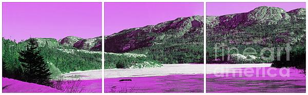 Purple Winter Triptych Print by Barbara Griffin
