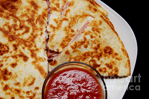 Quesadilla Print by Andee Design