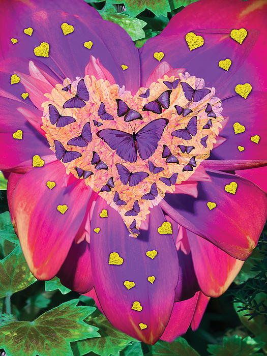 Radiant Butterfly Heart Print by Alixandra Mullins