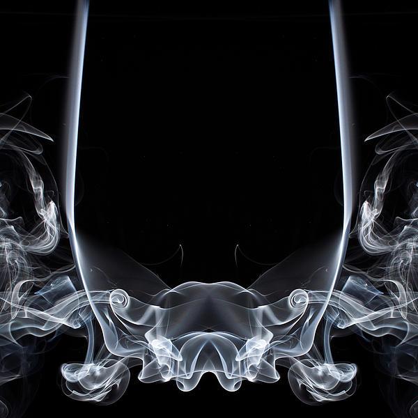 Raging Bull 1 Print by Steve Purnell