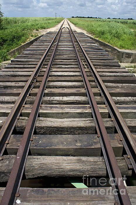 Railroad Tracks Print by Sami Sarkis