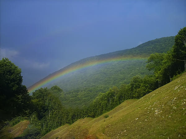 Chris Flees - rainbow over Maggie valley
