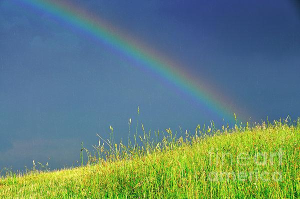 Rainbow Over Pasture Field Print by Thomas R Fletcher