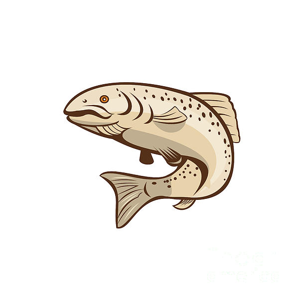 Rainbow Trout Jumping Cartoon  Print by Aloysius Patrimonio