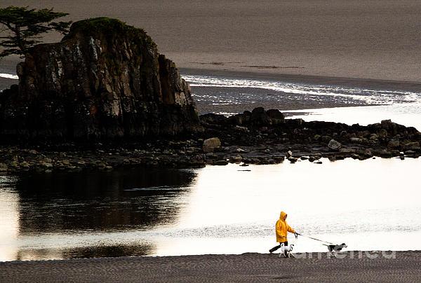 Raincoat Dog Walk Print by John Daly