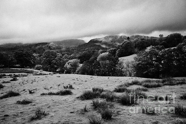 Rainy Day In The Lake District Near Loughrigg Cumbria England Uk Print by Joe Fox