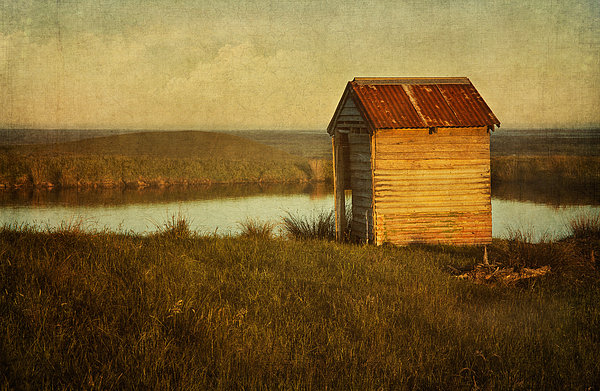 Ramshackle Print by Amy Weiss