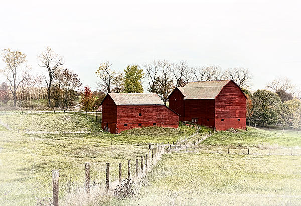 Red Barn Print by Marcia Colelli