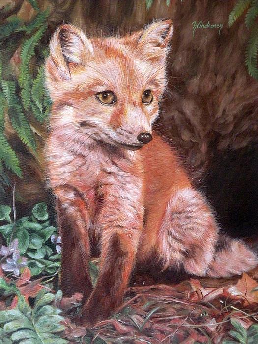 Red Fox Kit Print by Nancy Andresen