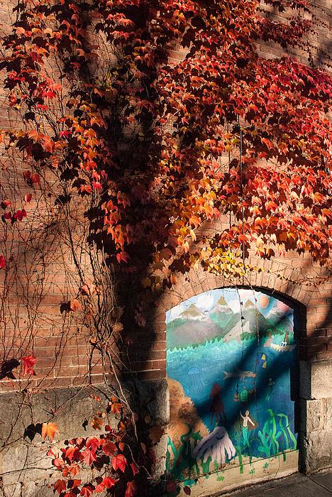 Red Ivy Brickwall Shelburne Falls Massachusetts Print by Robert Ford
