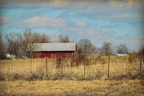 Red Kentucky Relic Print by Paulette B Wright