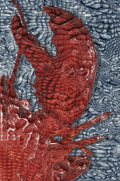 Red Lobster Print by Jack Zulli