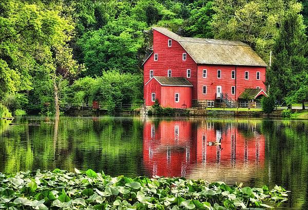 Pat Abbott - Red Mill Topaz