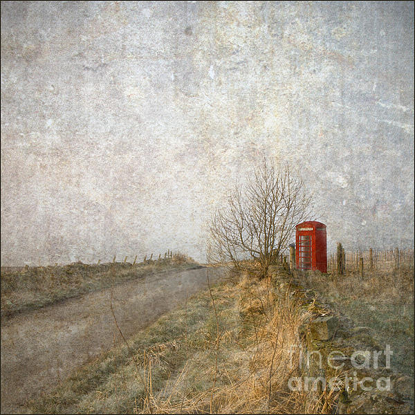 Red Phone Box Print by Liz  Alderdice