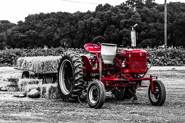 Red Tractor Print by Steven  Taylor