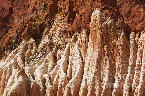 red Tsingy Madagascar Print by Rudi Prott