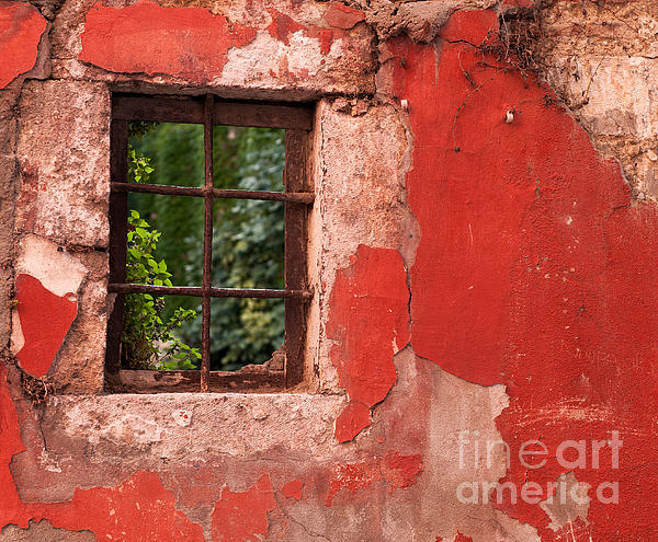 Red Wall Print by Rick Piper Photography