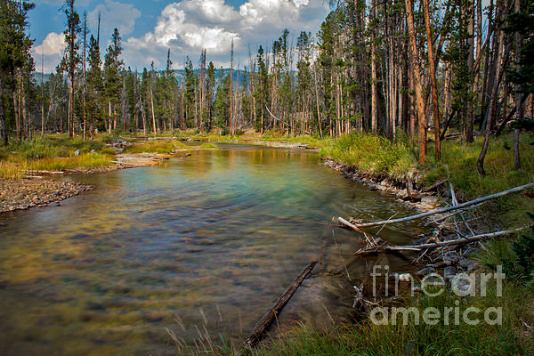 Redfish Lake Creek Print by Robert Bales