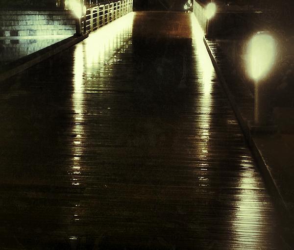Julian Darcy - Reflections in the rain
