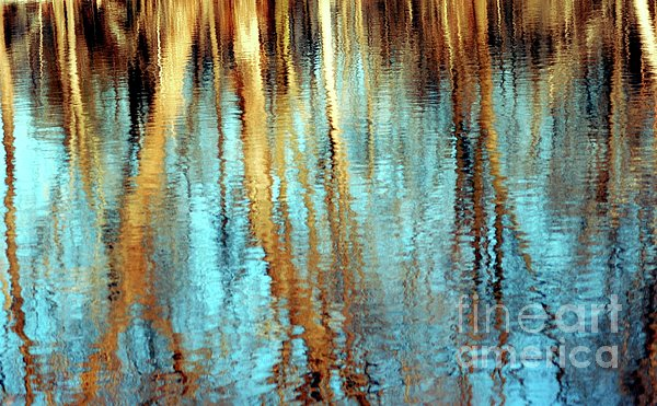 Kathleen Struckle - Reflections In Water