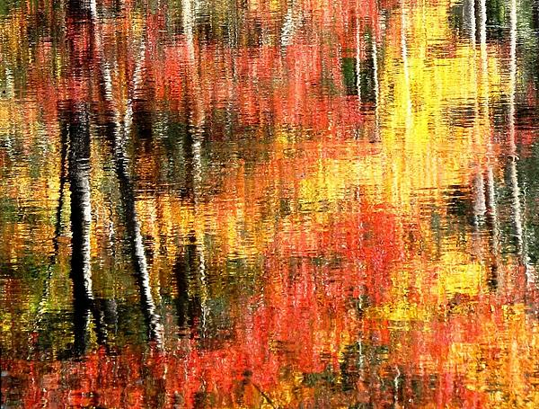 Angela Davies - Reflections Of Autumn