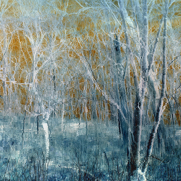 Refreshing Breeze Print by Tom Druin