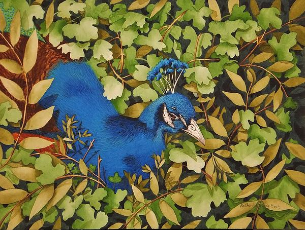 Resting Peacock Print by Katherine Young-Beck