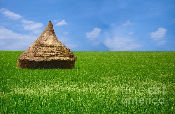 Rice Farming Print by Boon Mee
