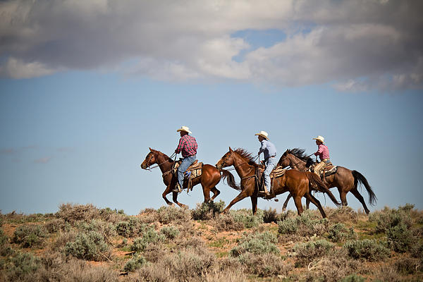 Riding The Range Print by Diane Mintle