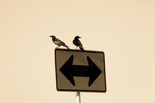 Right Or Left Print by Kaleidoscope Klick Photography