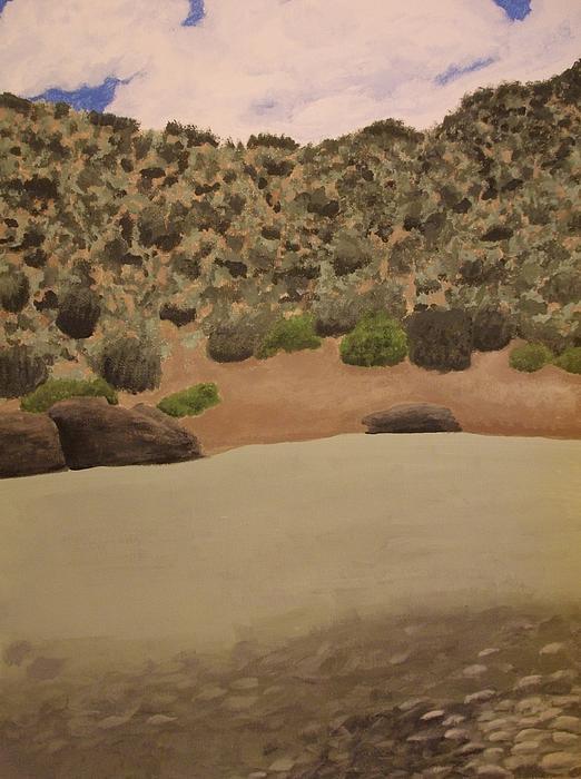 Rio Grande New Mexico Print by Elizabeth Sullivan