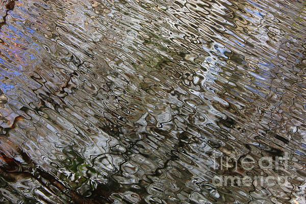 Ripples In The Swamp Print by Carol Groenen