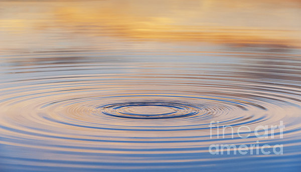 Ripples On A Still Pond Print by Tim Gainey