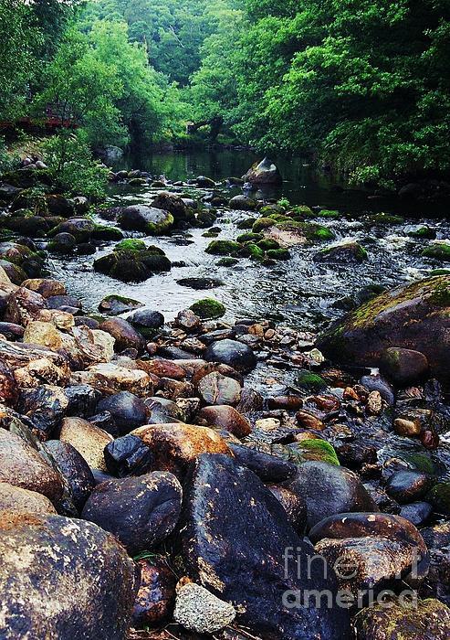 Marcus Dagan - River Rocks Wicklow