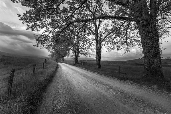 Road Not Traveled Print by Jon Glaser