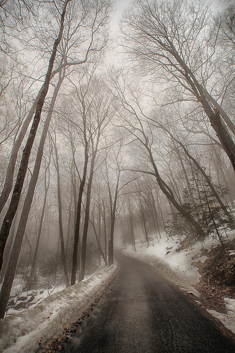 Road To Winter Print by Karol  Livote