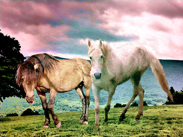 Patricia Keller - Roaming Stallions