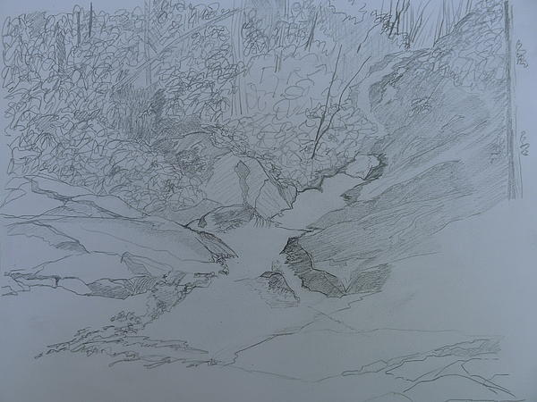 Roaring Fork Falls - Sketch Print by Joel Deutsch