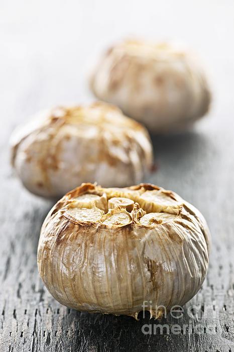 Roasted Garlic Bulbs Print by Elena Elisseeva