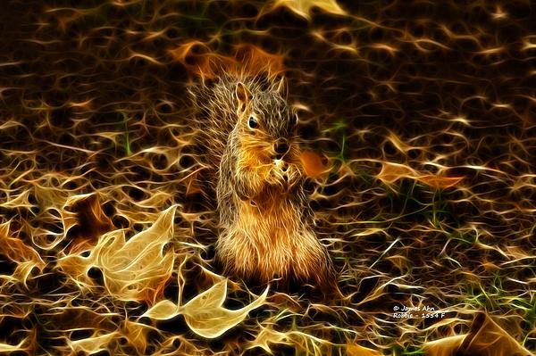 Robbie The Squirrel -1554 F Print by James Ahn